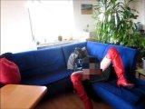 Amateurvideo Lederfrau wixt sich durch von Poppschlampe